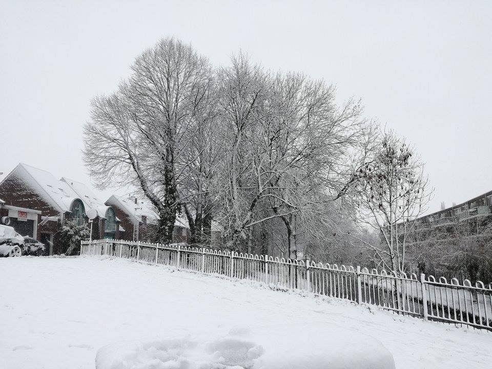 Winterse temperaturen verdwijnen