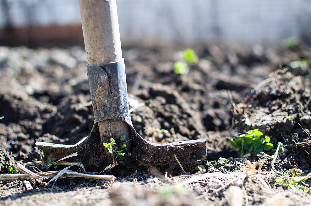 Gratis compost tijdens Landelijke Compostdag